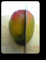 日本のマンゴーの花切り1
