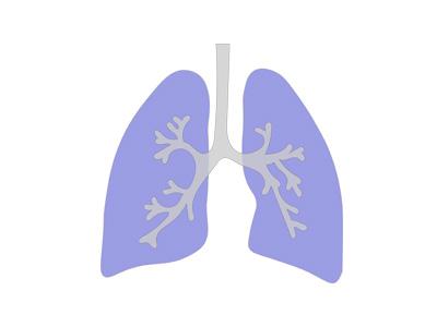 ダイビング 肺